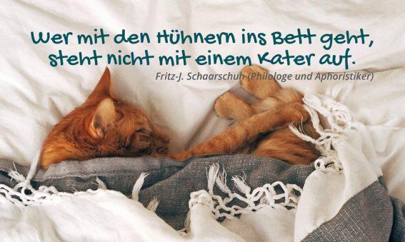 Postkarte: Wer mit den Hühnern ins Bett geht, steht nicht mit einem Kater auf.