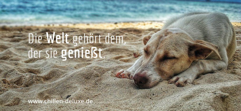 Postkarte: Die Welt gehört dem, der sie genießt.